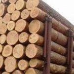 Φρικτό εργατικό δυστύχημα: Εργάτης καταπλακώθηκε από 1,5 τόνο ξύλα